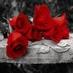 RoseTone ~LoA~